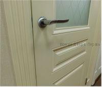 крашенная дверь скинни 15