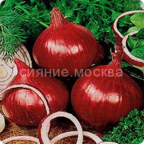 Лук-севок Ред Семко, 100 г