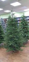 Искусственная елка Французская 215 см зеленая