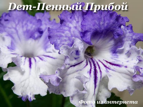 Dem-Пенный Прибой (Д.Демченко)