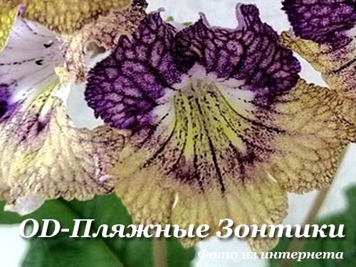 OD-Пляжные Зонтики (Н.Стоянов)