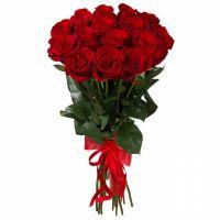 Розы Эксплорер 60 см, от 15 шт