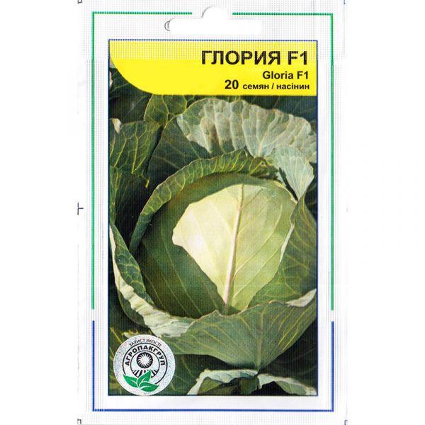 «Глория» F1 (20 семян) от Syngenta, Голландия