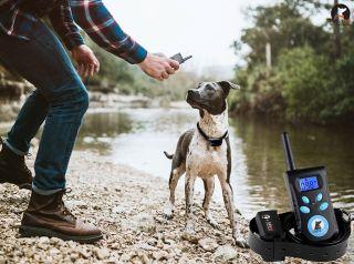 Электронный ошейник Axsel PD-520L для больших и средних собак