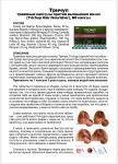 Тричуп травяные капсулы против выпадения волос (Trichup Hair Nourisher), 60 капс.