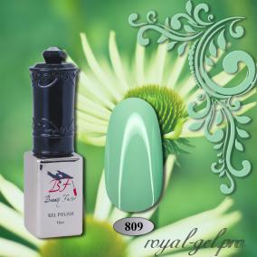 Гель лак Beauty-Factor от Royal 10 мл. 0809