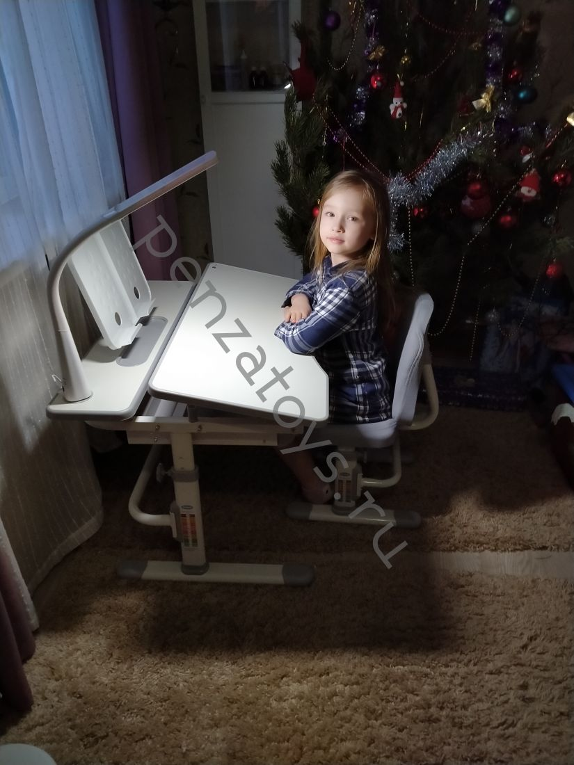Комплект Rifforma парта+стул с чехлом Set-07 Lux
