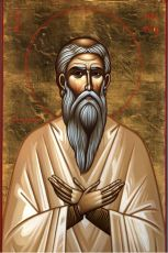 Икона Македоний Сирийский преподобный