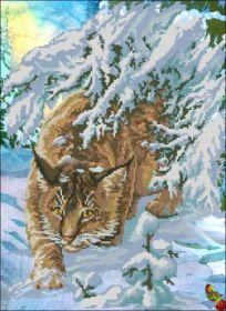 Феникс Колибри. Рысь в Снегах. А2 (набор 2150 рублей)