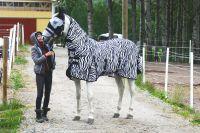 "Антимоскитная попона с капором и фартуком ""Зебра"", Scan-Horse ""Horse Comfort"""
