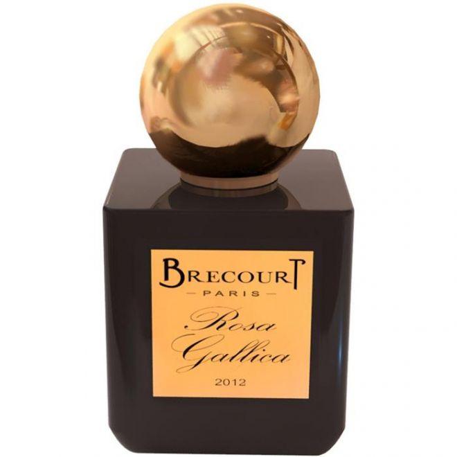 Brecourt  ROSE GALLICA
