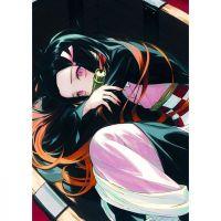 Плакат Demon Slayer Kimetsu no Yaiba
