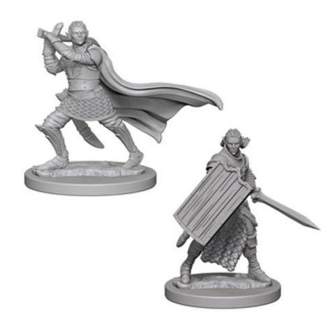 Pathfinder Miniatures - Elf Male Paladin