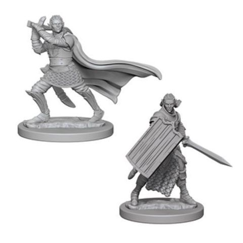 Pathfinder Miniatures - Elf Male Paladin