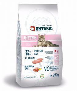 Ontario Для котят с курицей