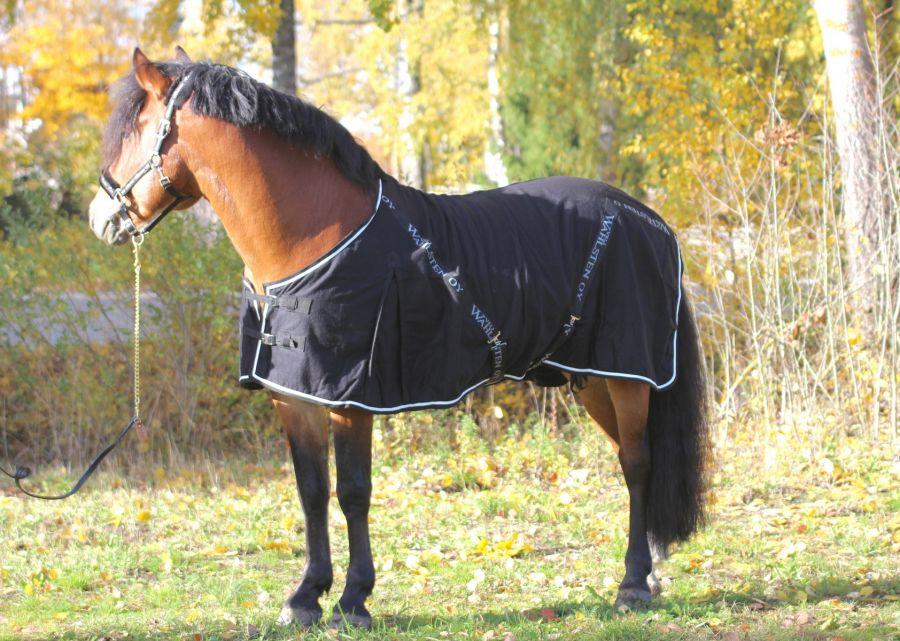 """Шерстяная попона """"Horse Comfort """"  Плотность 425 гр."""