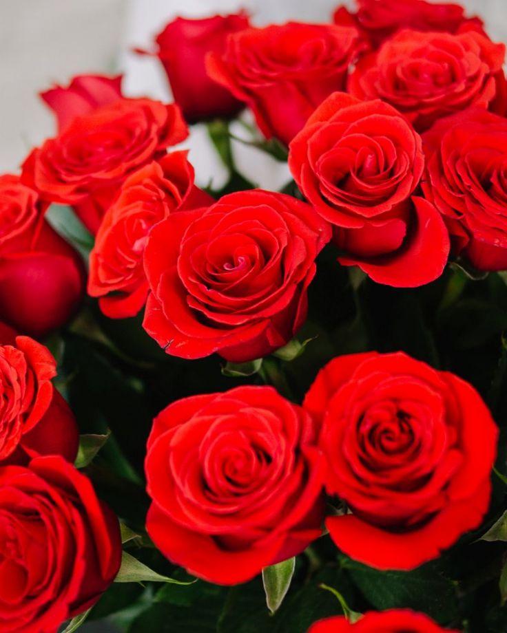 """Букет цветов из 15 роз """"Нина"""""""