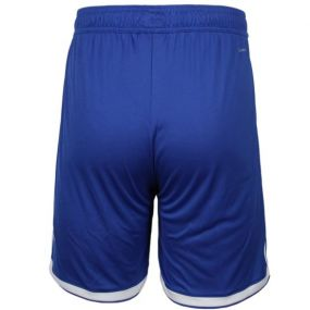 Игровые шорты adidas Regista 18 синие