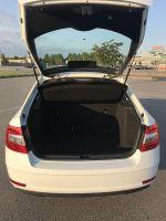 Большой багажник liftback у октавии