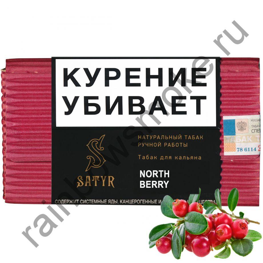 Satyr High Aroma 100 гр - North Berry (Клюква)