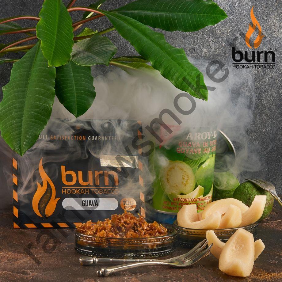 Burn 100 гр - Guava (Гуава)