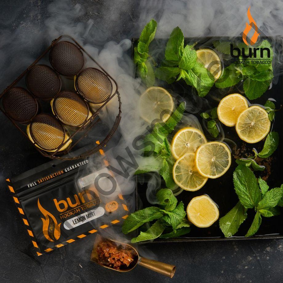 Burn 100 гр - Lemon Mint (Лимон с Мятой)
