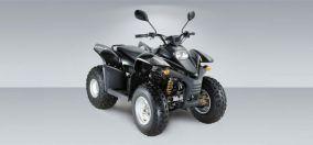 Stels ATV 100 RS