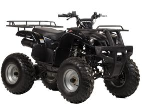 Irbis ATV 150 U