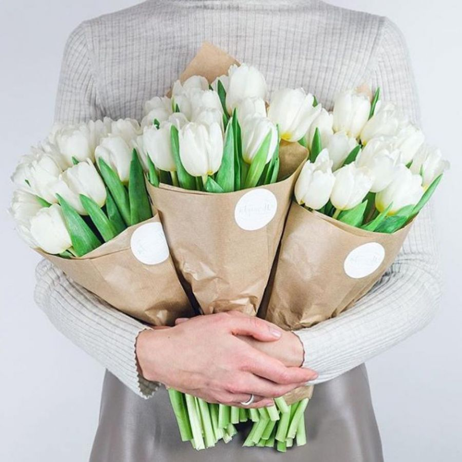КП 13 тюльпанов