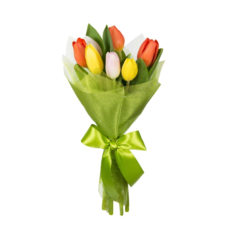КП 7 тюльпанов