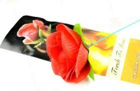 Факел превращается в красную розу