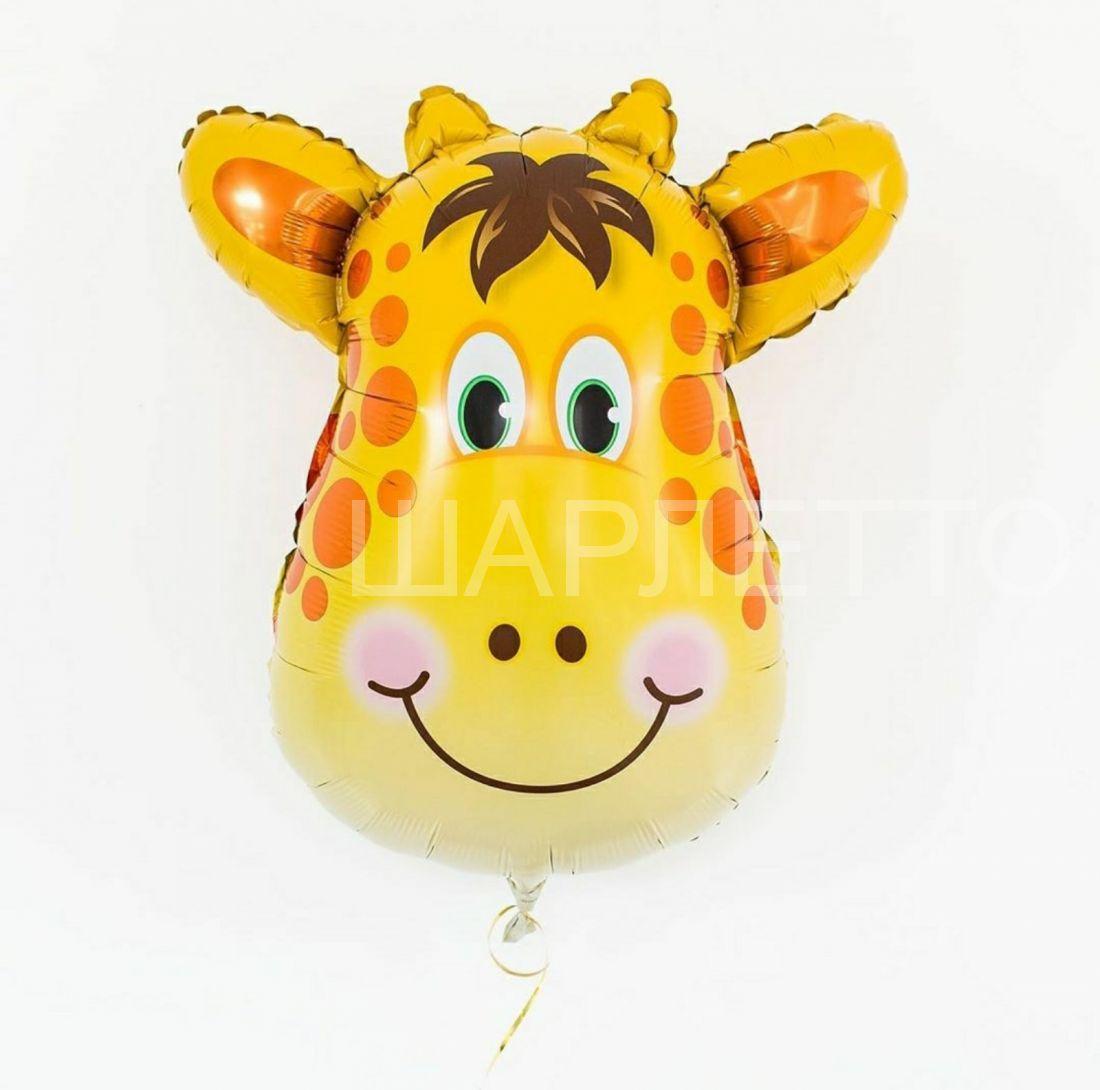 "Шар ""Голова Жирафа """