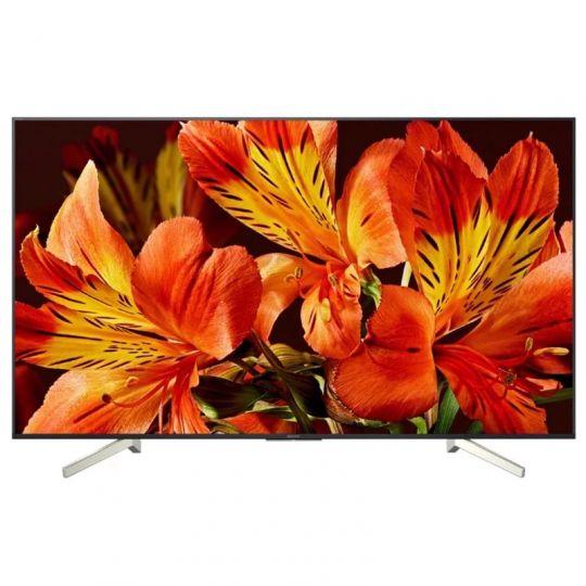 Телевизор Sony KD-49XF8596