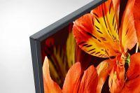 Телевизор Sony KD-65XF8596 обзор