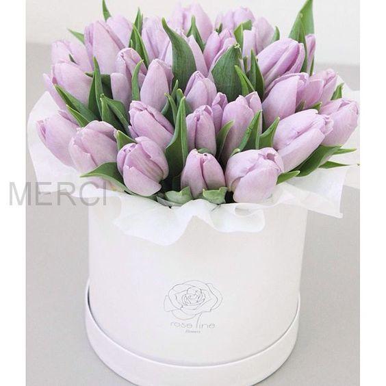 25 тюльпанов в белой шляпной коробке