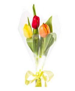 Тюльпаны букет 3шт в ассортименте