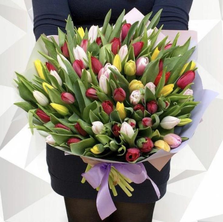 55 тюльпанов микс