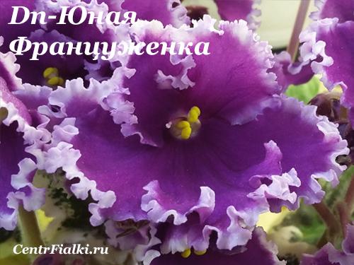 Dn-Юная Француженка(Д.Денисенко)