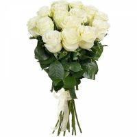 Розы белые от 15 шт.
