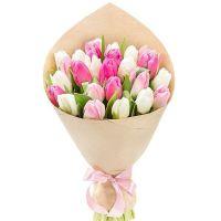 Тюльпаны 25 шт (нежный)