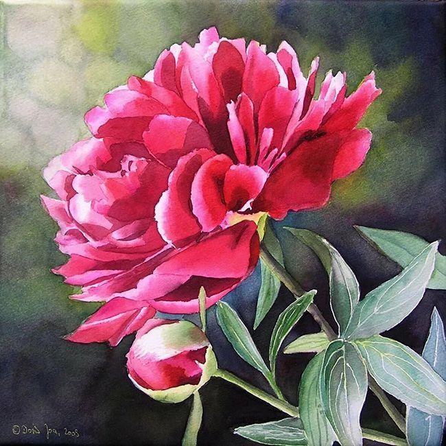Набор Алмазная мозаика Цветы (Пионы) 20*20 см