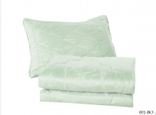 Одеяло стеганое Organic bamboo евро (200*220) Арт.200/001-BO