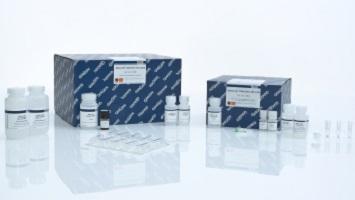 Набор QIAamp DNA mini kit