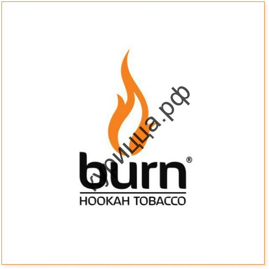 BURN BERRY MIX 1ГР