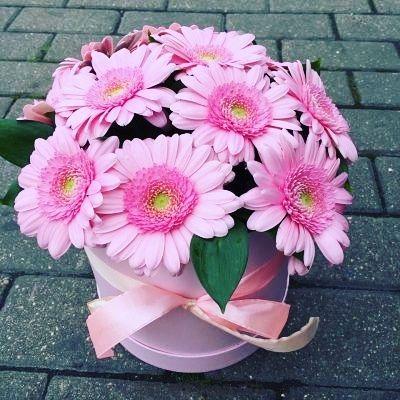 """Цветы в коробке """"Гермини"""""""