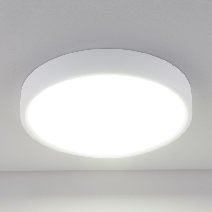 Светильник светодиодный Elektrostandard DLR034 24W 4200K a043016