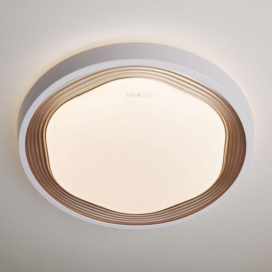 Светильник светодиодный управляемый Elektrostandard 40005/1 LED кофе
