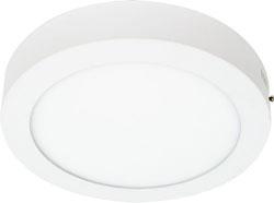 Светильник накладной со светодиодами 6W, 480Lm, белый (4000К), AL504