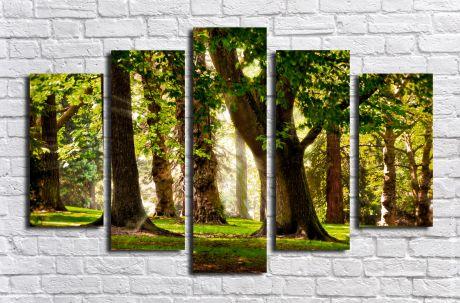 Модульная картина Утро в лесу