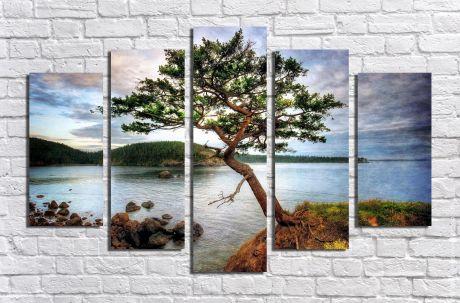 Модульная картина Пейзажи и природа 51